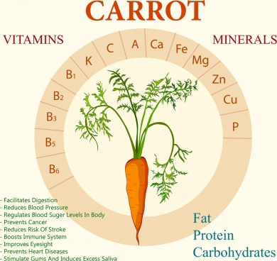 carrot benefit infographic flat circle layout texts decor