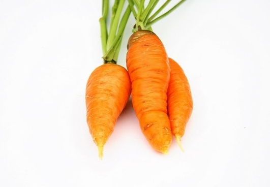carrot hd picture 1