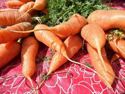 carrots bushel greens