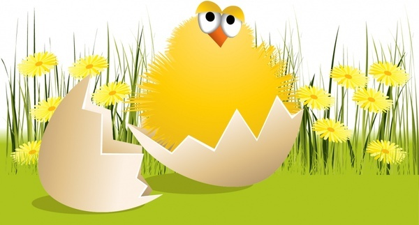 hatched chick background cute colorful cartoon design