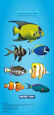 cartoon marine fish vector