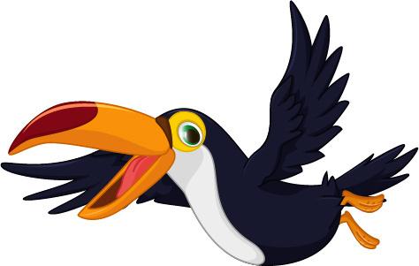 cartoon toucan bird vector