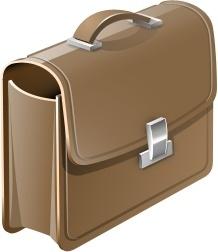 Case / Bag