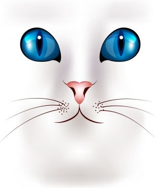 cat face portrait closeup design blue eyes