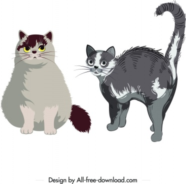 cat pet icons grey fur design cartoon sketch