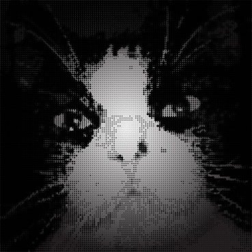 cat silhouette vector pixel art
