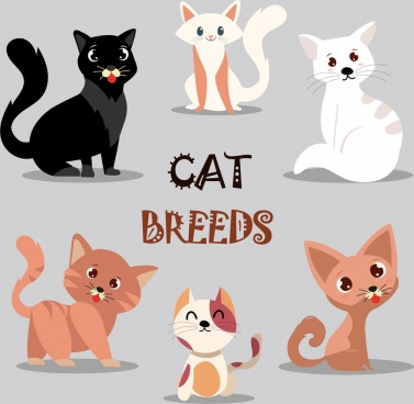 cats background various icons cute cartoon design