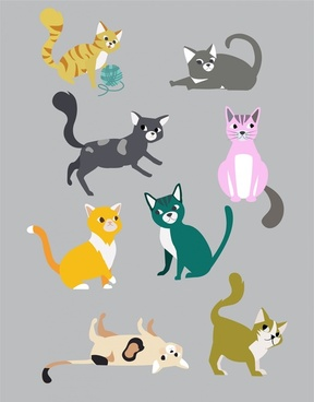 cats collection with various color styles