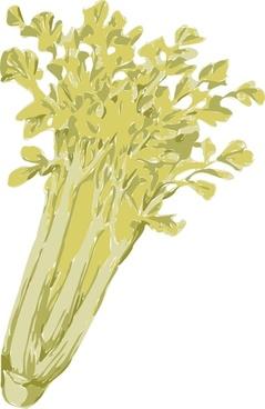 Celery clip art