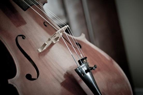 cello detail instrument