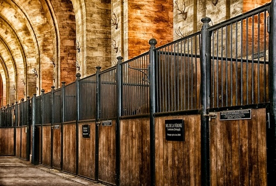 chantilly france stables