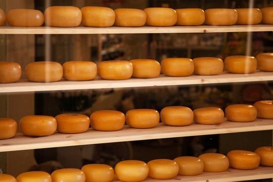 cheese cheesy circle