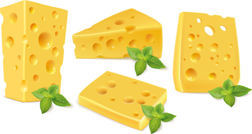 cheese with green leaf design vector