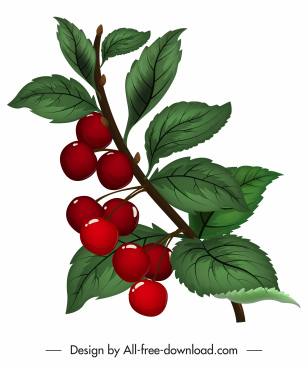 cherry painting shiny colored classical design
