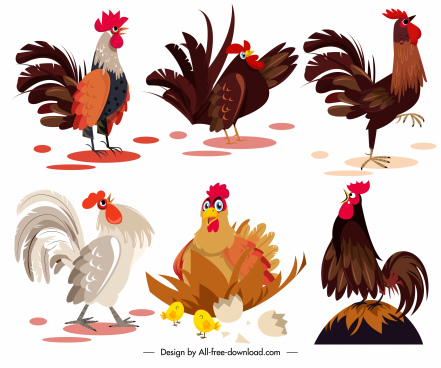 chicken icons colored cartoon sketch