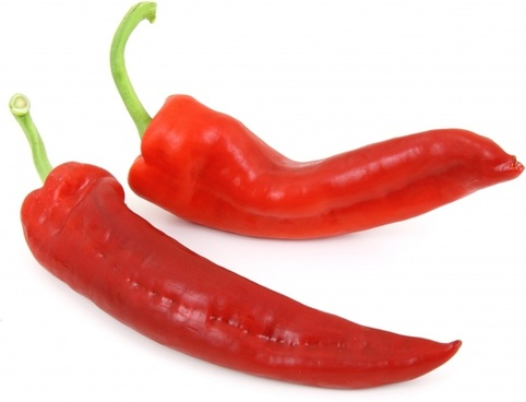 chili chilli food