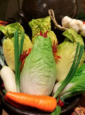 chinese cabbage carrot leek