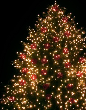 christmas christmas tree lichterkette