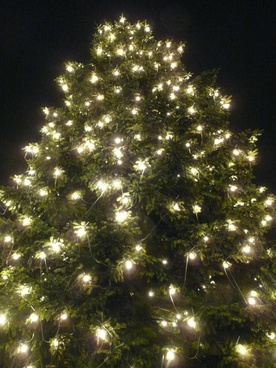 christmas christmas tree lichterkette