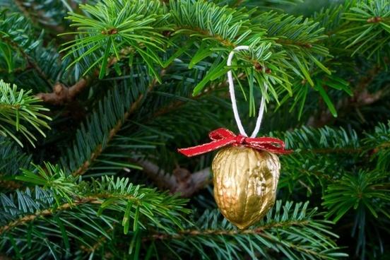 christmas xmas tree