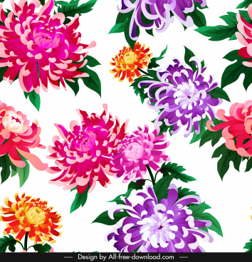 chrysanthemum flora background bright colorful decor blooming sketch