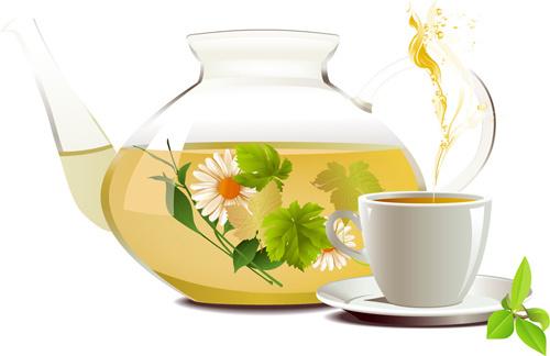 chrysanthemum tea creative vectors