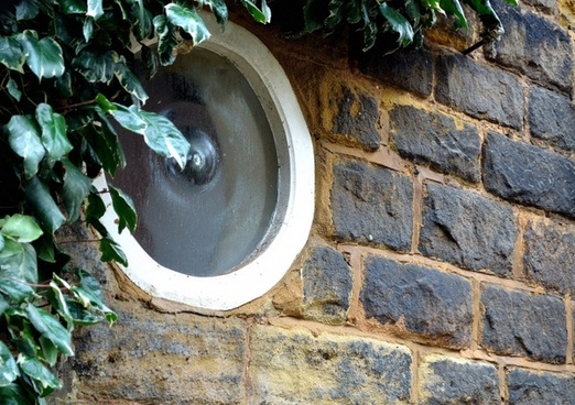 circle window and ivy