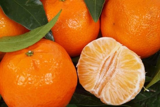 citrus clementine food