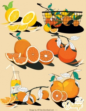 citrus fruits icons colored classical handdrawn design