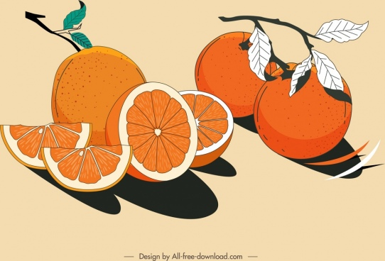 citrus fruits painting colored retro design
