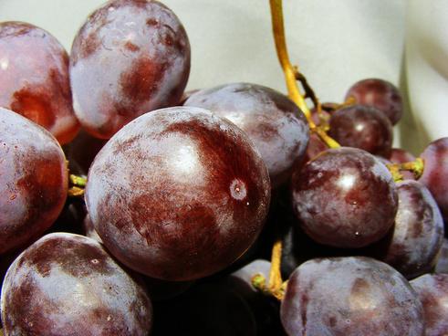 close grapes