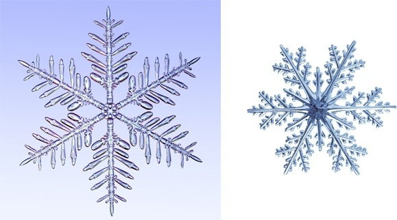 close snowflakes hd larger image