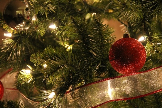 close up of christmas tree with red ball ornament