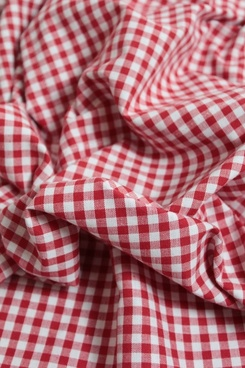 cloth checkered fabric