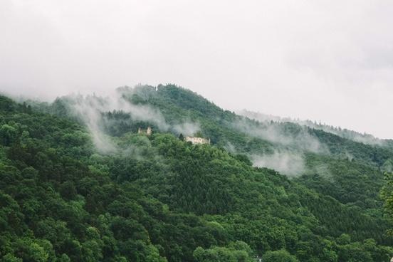 cloud fog forest haze hill landscape mist misty