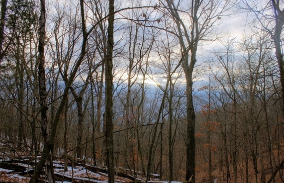 cloudy sunset over forest at weldon springs natural area missouri