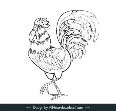 cock painting black white classic handdrawn sketch