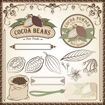 cocoa beans elements of labels and pattern borders vector