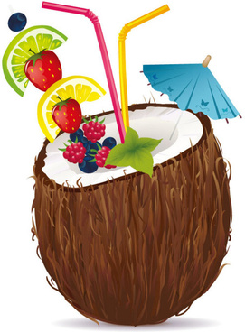 coconut design elements vector graphic