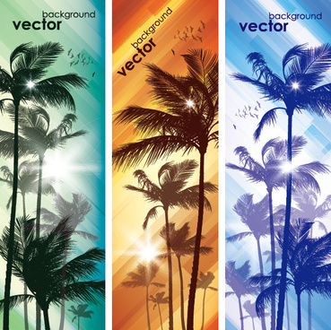 coconut elements banner vector