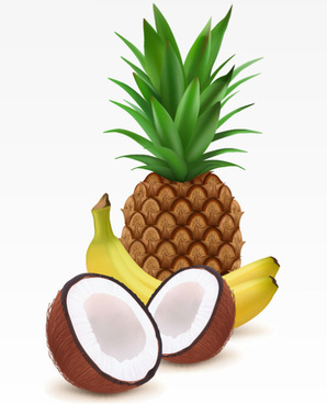 coconut pineapple and banana vector