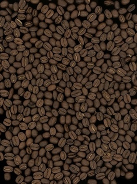 coffee beans background quality picture
