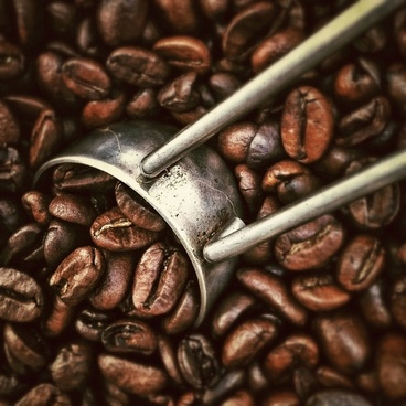 coffee beans beverages