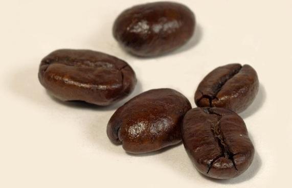 coffee beans coffee aroma