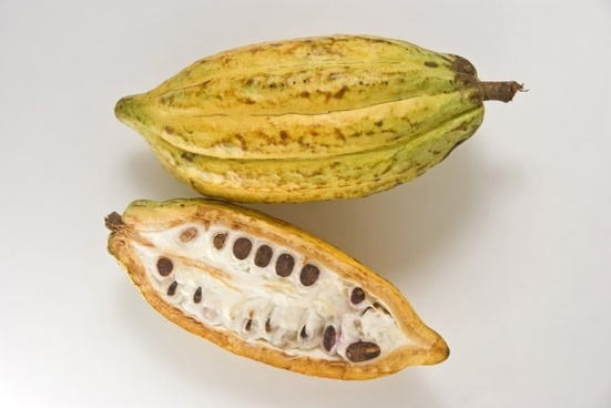 coffee beans fruit hd picture 3