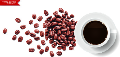 coffee beans with white background vector