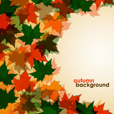 colored autumn leaves vector backgrounds