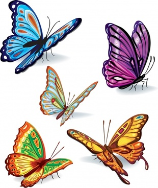 butterflies icons colorful modern 3d sketch