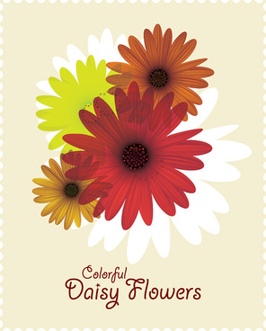 colorful daisy flowers vector