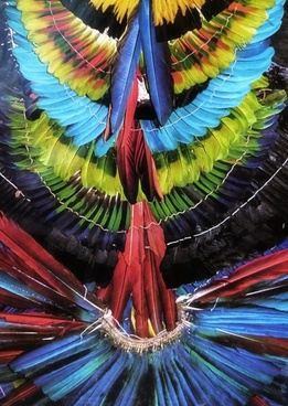 colorful feathered headdress amazon